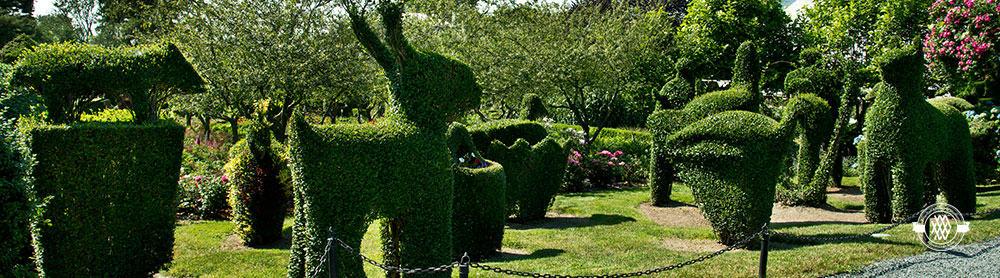 Photo courtesy Green Animals Topiary Garden website
