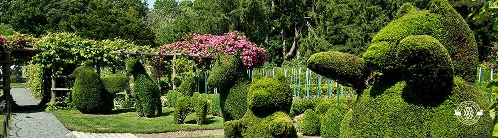 green-animals-garden