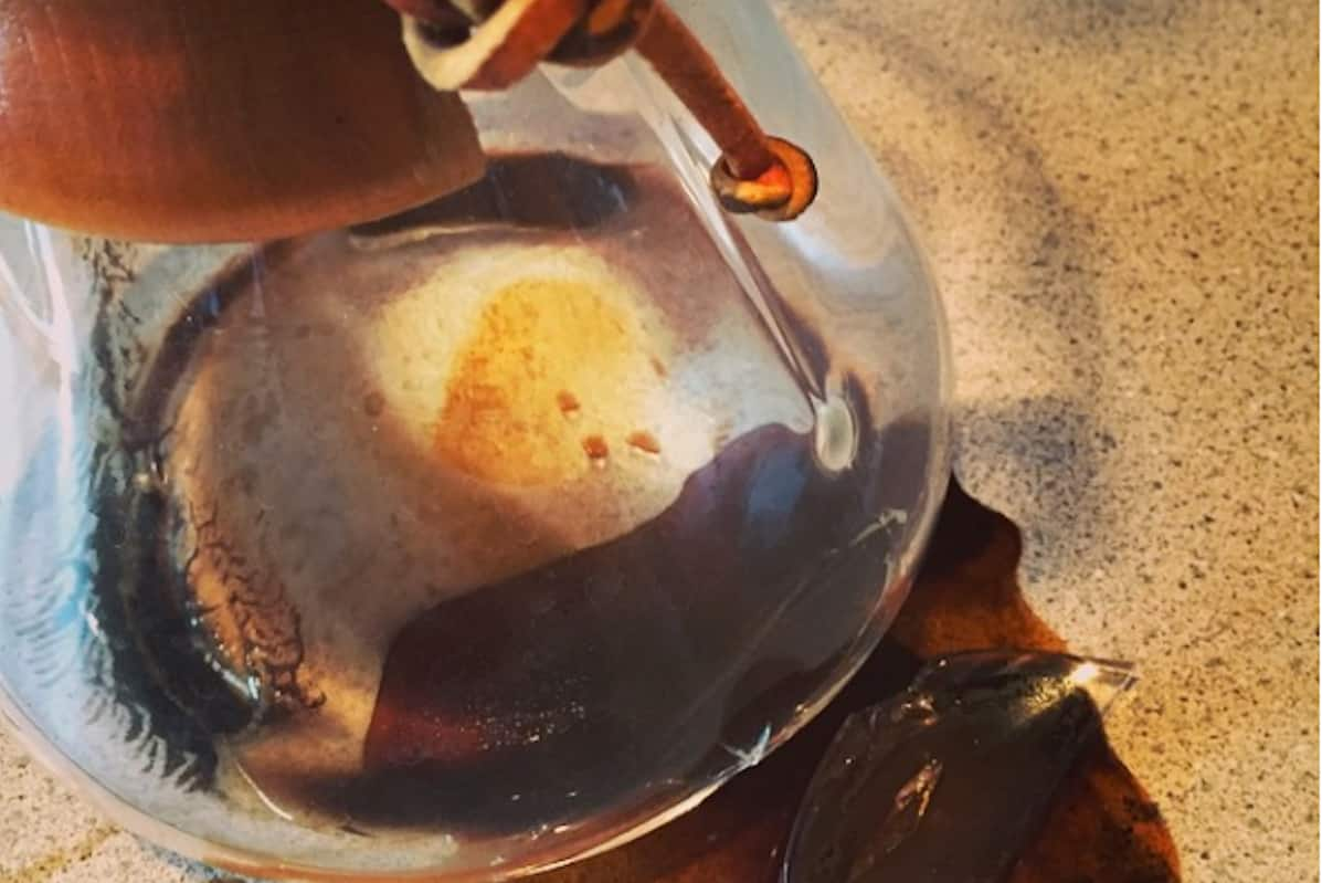 RIP Chemex by Jennifer Hayes