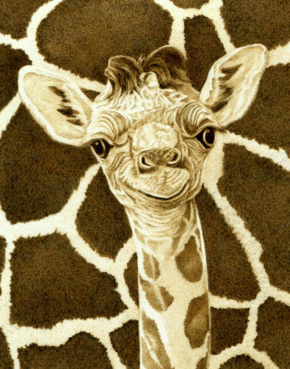 """Baby Giraffe""   Illustration burned on wood"