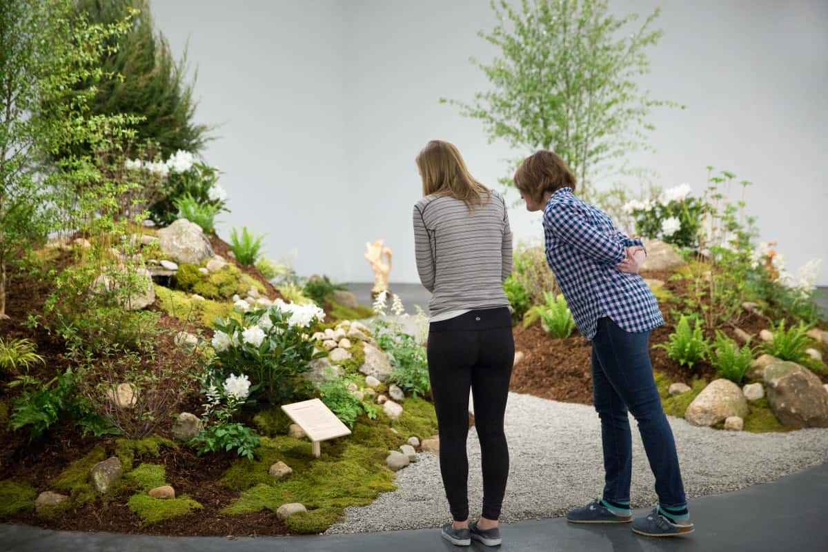 Collaborative Garden, John Gonzolez, 2016, Designed and installed in collaboration with Bel Terra employees inside David Winton Bell Gallery in Providence, RI | Photo courtesy Jesse Banks