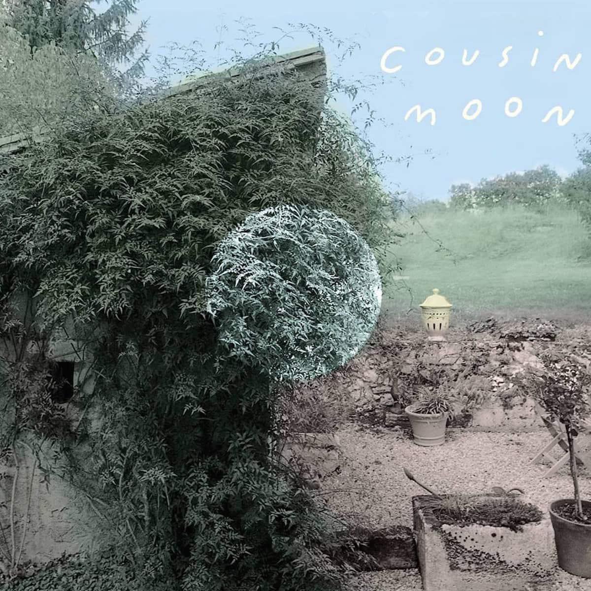 Cousin Moon, Massachusetts band