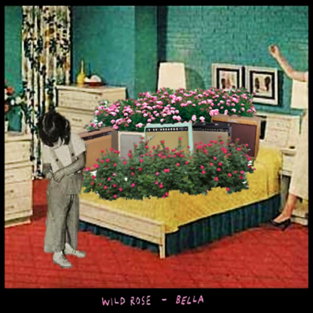 Wild Roses cover art by Bella Ortiz-Wren