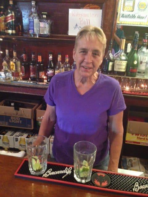 The Drinking Fountain, Jamaica Plain, Jill McDonough